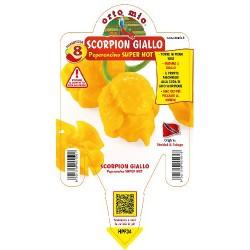 Peperoncino scorpion giallo...
