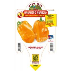 Peperoncino Habanero...
