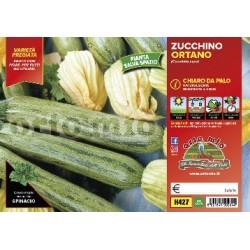 Zucchino Strike v10