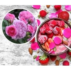 Rosa con fiori edibili...