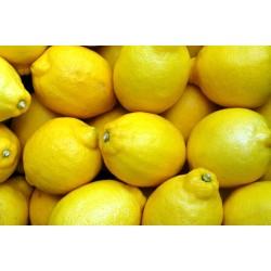 Limone v35