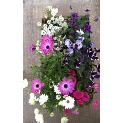 Kit fioriture mix colori...